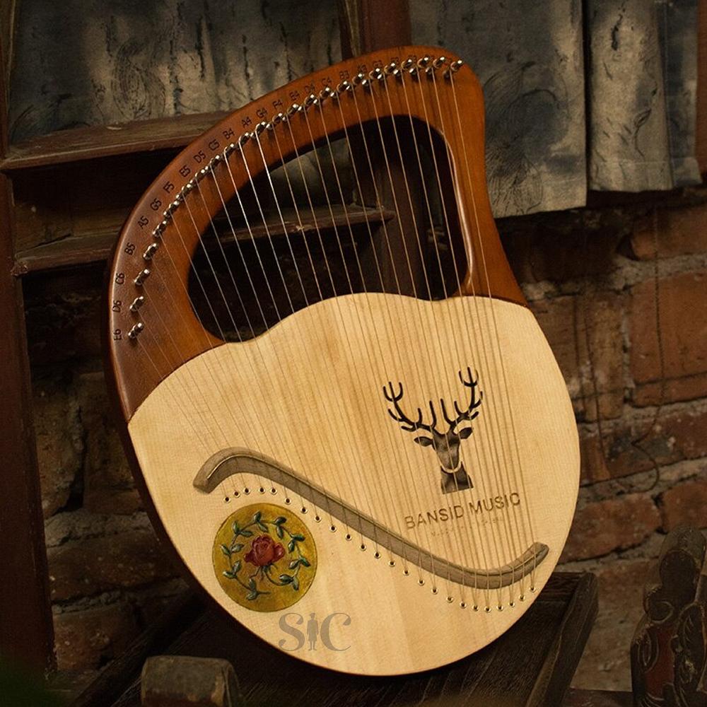 Jaw Big 21 String Harp Instrument Design 88